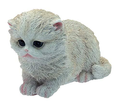 Chat Dandy 18 cm