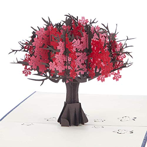 Cardology: 3D-Karte zur Rubinhochzeit, Geschenkidee zum 40. Hochzeitstag, Pop-Up-Karte, handgefertigt