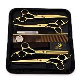 Ciseaux pour animaux de compagnie Ciseaux professionnels de toilettage de cheveux d'animal familier de cisaillement - kit parfait de trimmer pour les cheveux longs et courts, fourrure pour le chat et