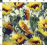 Sonnenblume, Blumen, Golden, Gelb, Sonnenblumen,
