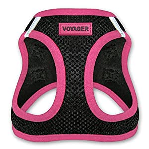 Voyager Step-in Air Dog Harness – All Weather Mesh, Step in Vest Harness for XS (Chest: 13 – 14.5″ ) Dogs by Best Pet Supplies