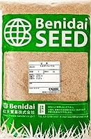 緑化用西洋芝草種 ケンタッキーブルーグラス 1kg(約2L) 紅大貿易