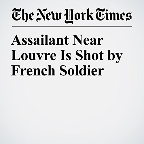 Assailant Near Louvre Is Shot by French Soldier copertina