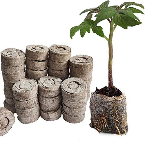 WRYIP Kokos Quelltabletten mit Nährstoffen,Anzuchterde torffrei für die Samenkeimung,Premium Quelltabs zur Pflanzen Kräuter Blumen und Gemüse (20 Stück)