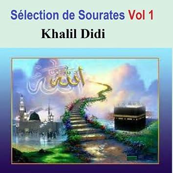 Sélection de Sourates, vol. 1 (Quran - coran - islam)