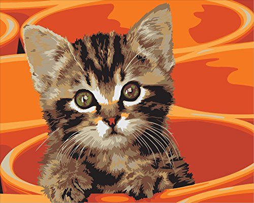 DIY 数字油絵 数字塗り絵 大人の子供のためのギフト デジタル油絵 数字キットでペイント ホーム オフィス装飾 - オレンジカップの猫 40* 50センチ