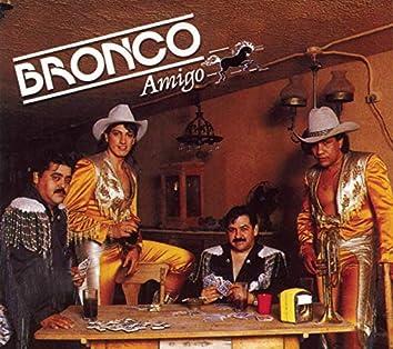 Bronco Amigo