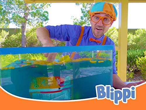Blippi Sink or Float - Cool Science Experiment for Kids Part 3
