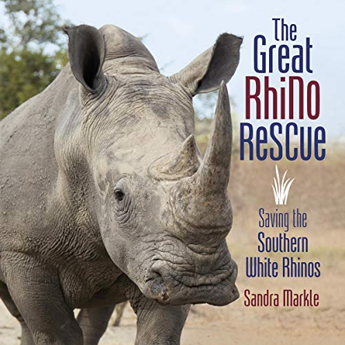 The Great Rhino Rescue cover art