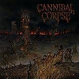 Songtexte von Cannibal Corpse - A Skeletal Domain
