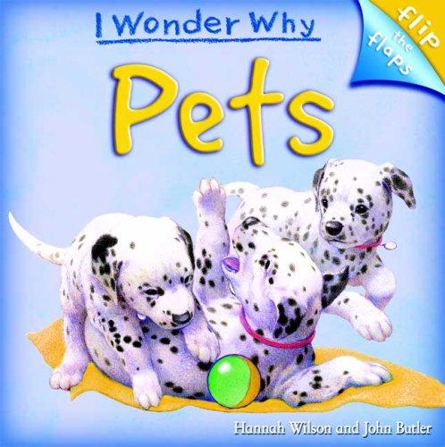 I Wonder Why Pets (I Wonder Why (Flip the Flaps))