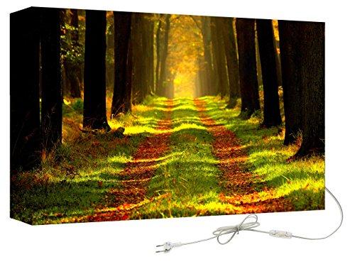 Decoralive Wandbild mit Hintergrundbeleuchtung 75.00x50.00x16.00 cm bunt