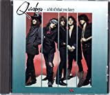 Songtexte von The Quireboys - A Bit of What You Fancy