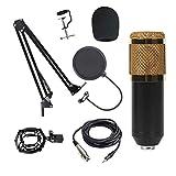 Qiandeng Kit de micrófono Condensador Mic Set sobre Ajustable Arm DE Arma DE Scissor (Color : Oro, tamaño : UN)