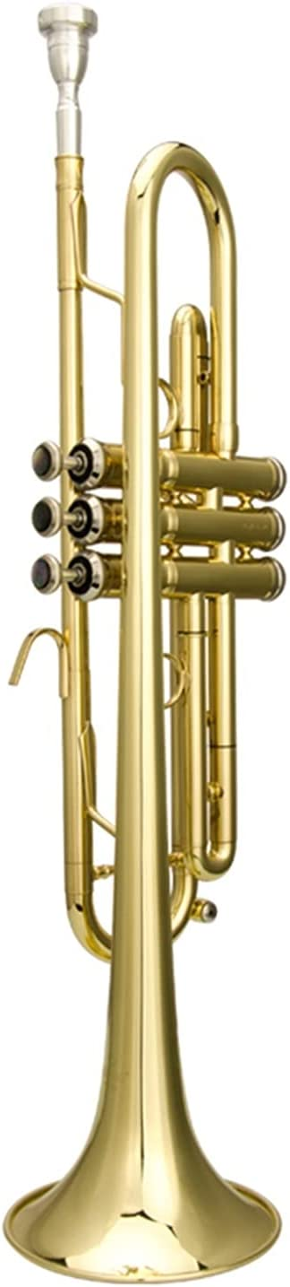 Trumpet New sales Professional Instrument Beginner OFFicial store C Playing Level