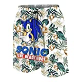 Children So-Nic The Hedg-Ehog 3D Print Shorts Surfing Casual Board Shorts Swim Trunk Quick Dry for Boys/Girls/Youth 10-12 Years
