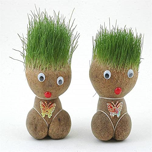 Mini Bonsai Head Grass Doll,One Pair Funny Fast Growing Grass Head, Fish Tank Decorations Plants for Rooms, Offices and Aquarium Decorations (2 PCS)
