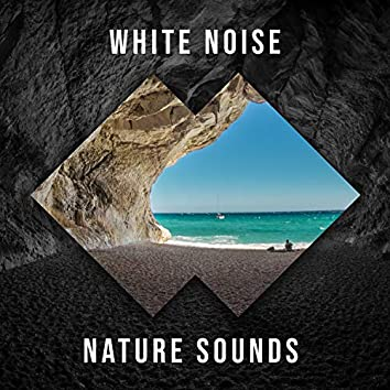 White Noise Nature Sounds, Vol. 8
