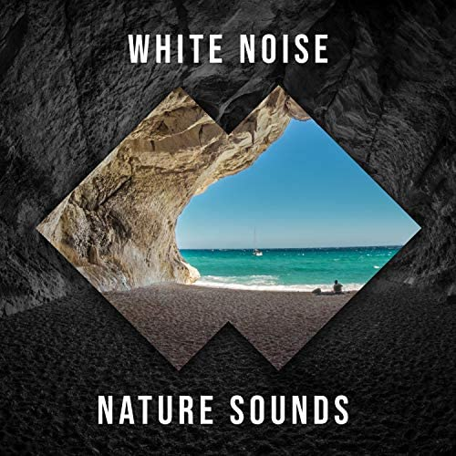 Loopable Ambience & Tranquil Music Sounds of Nature