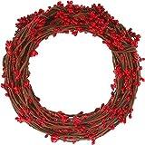WILLBOND 64 Pies 30 Paquetes Guirnalda de Ply Pip Baya para Navidad Invierno Interior Decoración al Aire Libre Cabeza Coronas Coronas de Boda (Rojo)