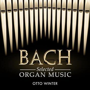 Bach: Organ Music Selections
