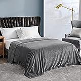 EHEYCIGA Fleece Blanket Queen Size Flannel Blanket Couch Grey Queen 90x90 Inches Microfiber Soft Cozy Lightweight Luxury Bed Blanket