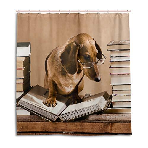 vinlin Duschvorhang Dackel H& Wasserdicht Badezimmer Zubehör 167,6 x 182,9 cm, Polyester, Multi, 72X72 inch