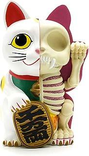 4D MASTER艺术家 Jason Freeny半解剖 高さ22cm大きな貯金箱ラッキーキャットの視点スケルトン解剖モデルHzotr