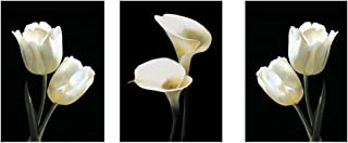 3 Panels White Tulip and Calla Lily Wall Art Print Picture, 3pcs/set Art Print Painting HD Frameless Picture Sofa Background Wall Decor Modern Artwork Decorative Image for Home Office Hotel(30x50cm)