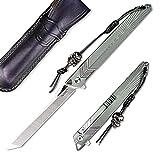 NEWOOTZ Japanese Folding Knife with Leather Sheath,Bohler M390 Steel Embedded Carbon Fiber 4in Tanto Blade,Titanium Handle Frame Lock Pocket Knife,EDC Knives for Men with a Skull