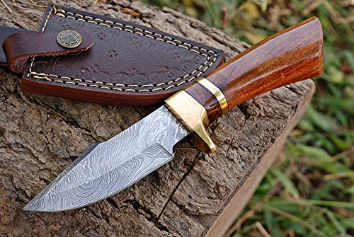 Custom Hand Forged Damascus Steel Skinner Hunting Knife Olive Wood Handle