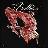 Ballet - Ballett 2020 - 16-Monatskalender: Original BrownTrout-Kalender [Mehrsprachig] [Kalender] (Wall-Kalender) - BrownTrout Publisher