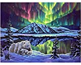 HAO Paint by Numbers Kits DIY Oil Painting Home Decor Wall Value Gift- Northern Lights and Polar Bears 40x50cm Sin Marco