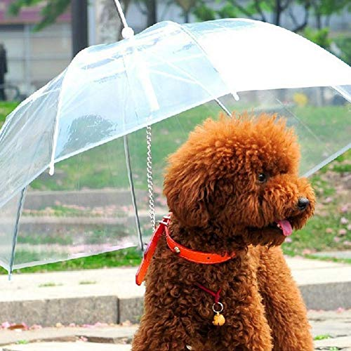 Heresell Paraplu voor honden, transparant, met riem en handvat, extra lang, voor honden en huisdierliefhebbers