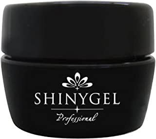 SHINY GEL カラージェル 4g マルーン256 UV/LED対応