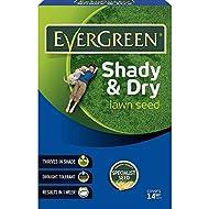 EverGreen Shady Lawn Grass Carton