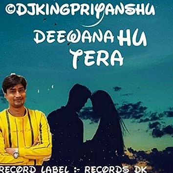 Deewana Hu Tera