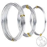 Pulluo 3 Rollos Alambre para Manualidades Alambre de Aluminio para bisutería Manualidades diseño Floral Color Plateado, 3 tamaños