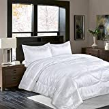 Raytrue-X Queen Comforter Set All Season Bed Comforter Queen Set 3 Piece Satin Silk Blanket White Bedspread Luxury Jacquard Quilt Soft Bedding Sets Matching 2 Pillow Shams (Full/Queen, 88x88 inches)