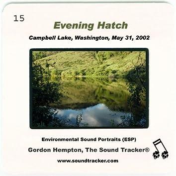 Evening Hatch