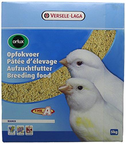 Versele-laga Orlux-Bianco Pâtée d'Elevage pour Oiseau 4 x 1,25 kg