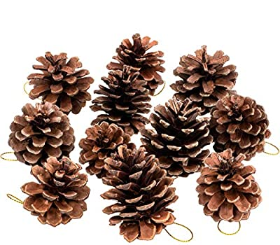 Whaline Natural Pine Cones,Christmas Rustic Pinecones Bulk Ornaments with String for Gift Tag Party Hanging Fall Thanksgiving and Christmas Tree Decoration (25 Pieces,1.6-2.4 Inches)