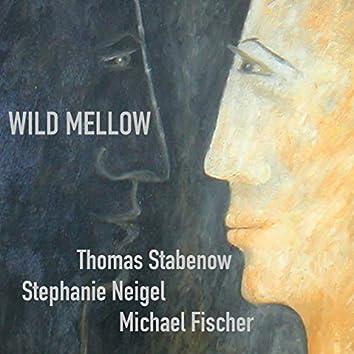 Wild Mellow (Remix)