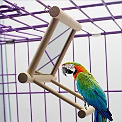 pet toys for birds