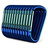 12 pack - 3' Blue Aluminum Carabiner D Shape Buckle Pack, Keychain Clip, Spring Snap Key Chain Clip Hook Buckle (Blue 3' (12 Pack))