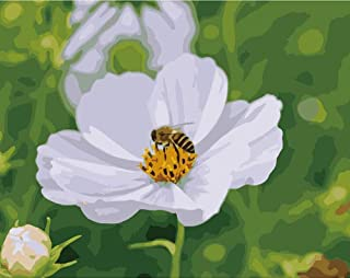Paint by Numbers for Adults by, DIY Adult Paint by Number Kits for Beginners on Canvas Rolled (White Flowers, 16in20in)