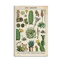 サボテン多肉植物チャートポスターヴィンテージ植物壁アートパネル写真植物科学版画子供教育キャンバス絵画インテリアモダン子供寝室装飾画40x60cmいいえフレーム