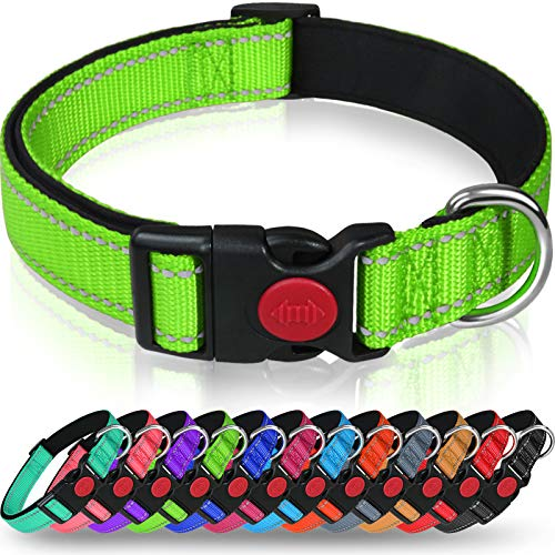 Taglory Hundehalsband, Weich Gepolstertes Neopren Nylon Hunde Halsband für Kleine Hunde, Verstellbare und Reflektierend für das Training, Grün