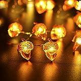 Ideapark Eicheln Deko Lichterketten, 2M 20 LED Lichterketten Batteriebetrieben mit 8 Flimmer Modi, Fernbedienung und Timer für Herbst, Halloween, Erntedankfest, Hochzeit, Geburtstag Party - 4