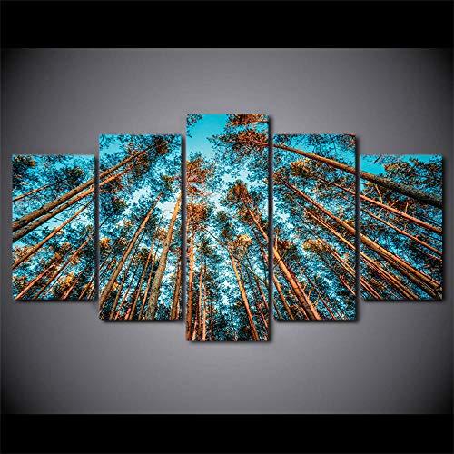 Zqylg Popular HD impreso 5 piezas de arte en lienzo árboles gigantes bosque lienzo pintura cuadros de pared para sala de estar pintura de pared moderna 30x50 30x70 30x80 sin marco